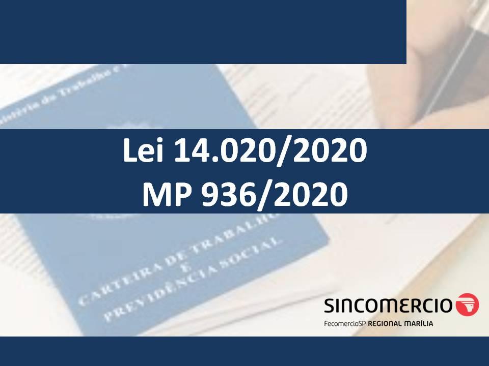 lei-14020-artigo-carol